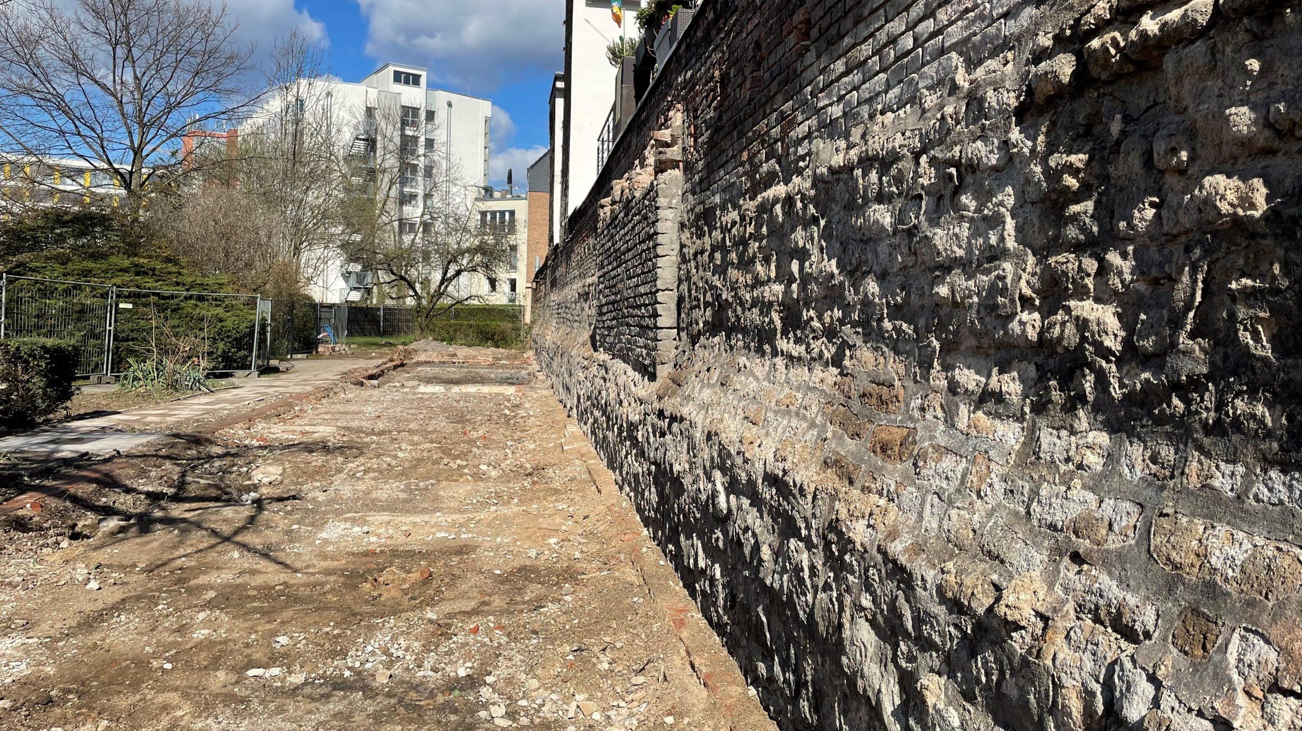 Klostermauer aus dem 14. Jahrhundert am Kartäuserwall freigelegt